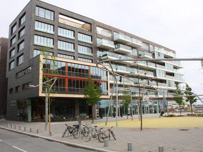 Dahlemer-Weg02 (1)